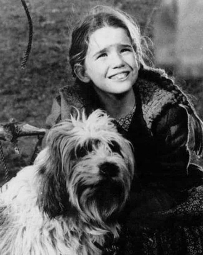 She Lived Through One Of The M... is listed (or ranked) 2 on the list Facts About Laura Ingalls Wilder And The Real Life Little House On The Prairie