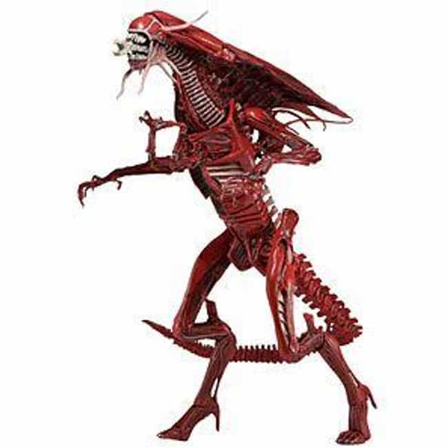 Ultra Deluxe Xenomorph R... is listed (or ranked) 2 on the list 18 Terrifying Children's Toys Inspired By The Movie 'Alien'