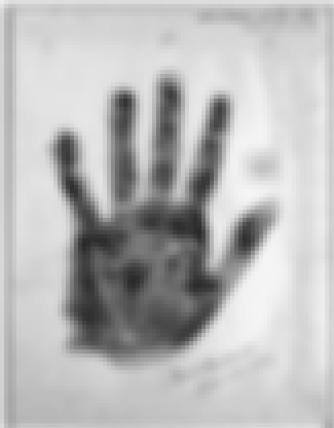 Amelia Earhart's Palm Print is listed (or ranked) 3 on the list 16 Fascinating Historical Artifacts Stored In The Library of Congress