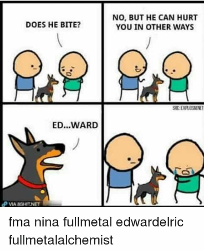 24 Hilarious Nina Tucker Memes From Full Metal Alchemist