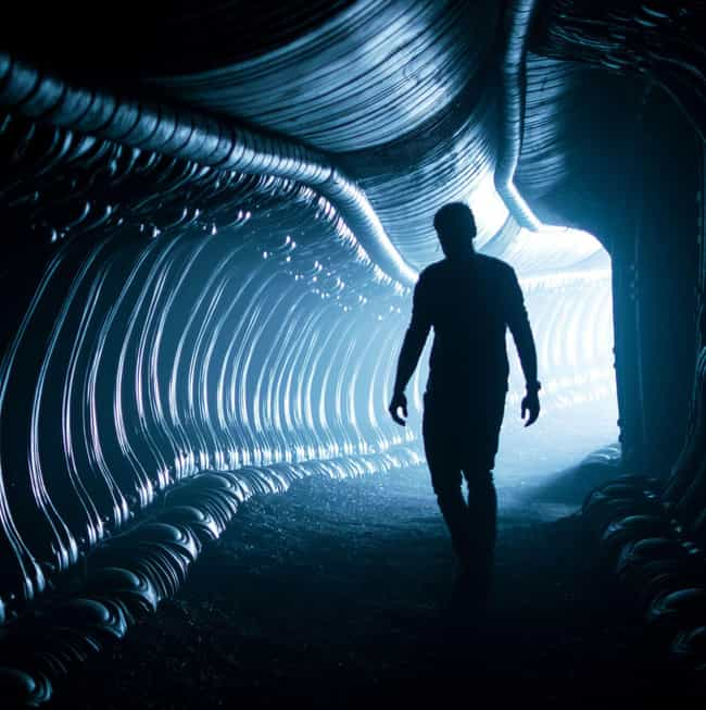 We Don't Know is listed (or ranked) 4 on the list Alien: Covenant Movie Quotes
