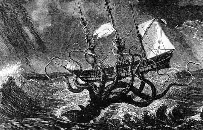 The Kraken Measured One-... is listed (or ranked) 1 on the list The Legend Of The Kraken Vs. The Actual Giant Squid