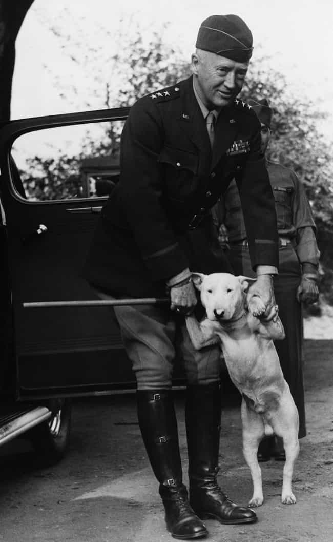 General Patton And His B... is listed (or ranked) 2 on the list 16 Adorable Photos of Real Dogs That Served In WWII