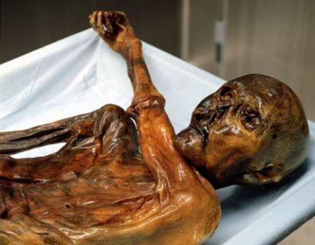 Ötzi The Iceman Cursed His Dis... is listed (or ranked) 1 on the list 8 Crimes And Tragedies Linked To The Occult And Heinous Curses