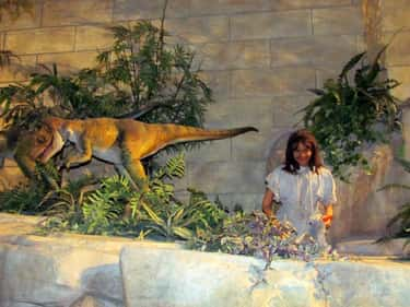 Cuddly Vegetarian Velociraptor is listed (or ranked) 2 on the list The Most Unbelievable Attractions At The Creation Museum