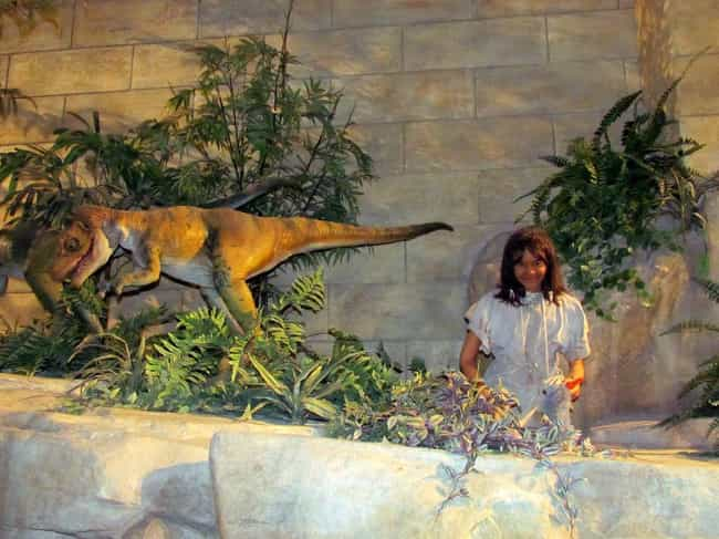Velociraptors Were Cuddly Vege... is listed (or ranked) 2 on the list The Most Unbelievable Attractions At The Creation Museum