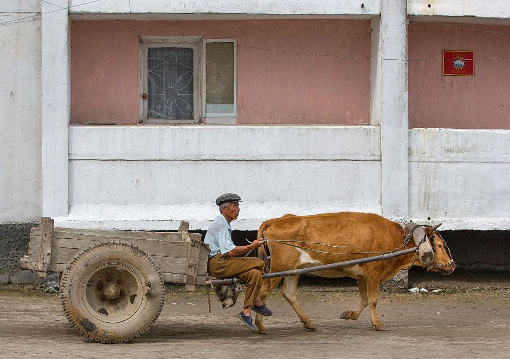 Man And A Cart on Random Pictures Of Rural Life In North Korea