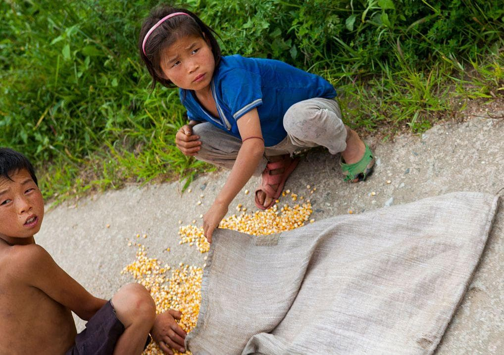 Children Collecting Corn On The Road, Kaesong on Random Pictures Of Rural Life In North Korea