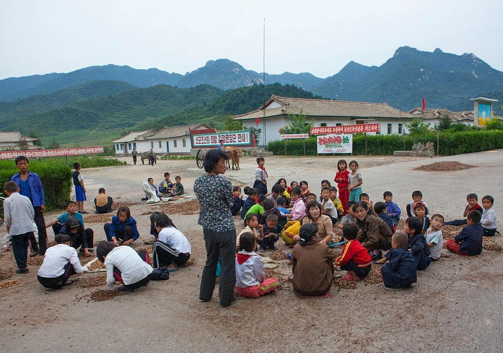 Village Kids Collecting Grains on Random Pictures Of Rural Life In North Korea