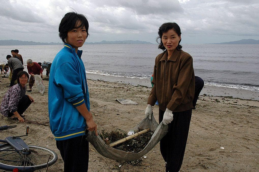 Volunteers Collect Seaweed On The Wonsan beach on Random Pictures Of Rural Life In North Korea
