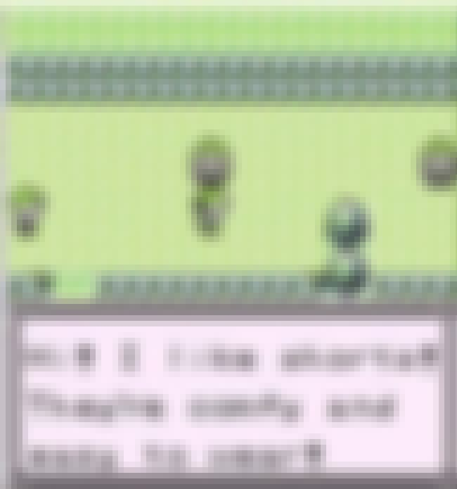 The Youngster Trainers Whose L... is listed (or ranked) 4 on the list The Funniest Things Pokémon NPCs Have Ever Said