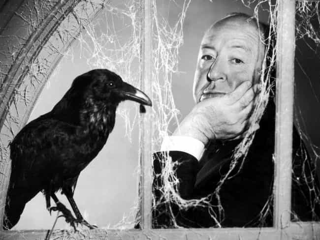 He Was Terrified Of Eggs... is listed (or ranked) 2 on the list 15 Extremely Bizarre Things Most People Don't Know About Alfred Hitchcock