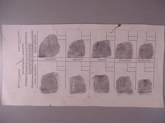 There Are Three Differen... is listed (or ranked) 4 on the list Intriguing Facts About The History Of Fingerprint Forensics
