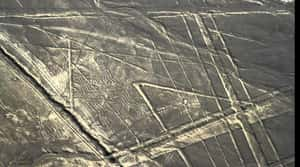 The Nazca Lines Were A Man-Mad... is listed (or ranked) 4 on the list Ancient Aliens May Have Found Actual Proof Of Extraterrestrial Life