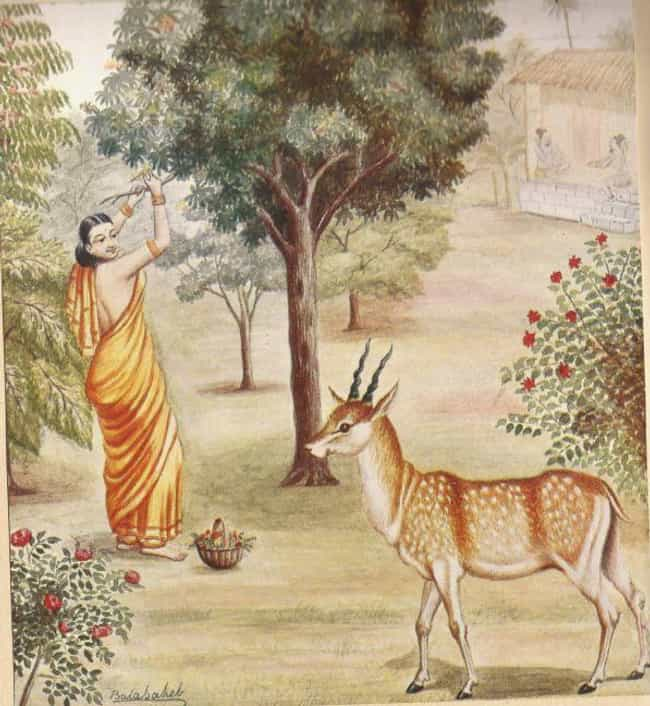 The Deer Woman Has Seale... is listed (or ranked) 3 on the list Women In Myth Who Represent Man's Fear Of Women