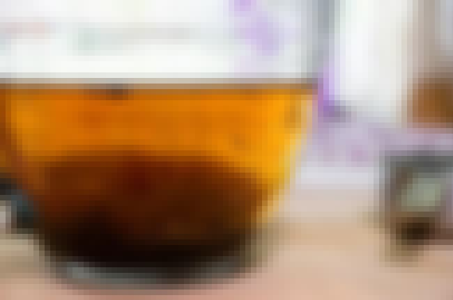 Poo Tea Helps Us More Than You... is listed (or ranked) 4 on the list 11 Creepy Crawlers That Govern Our Bodies