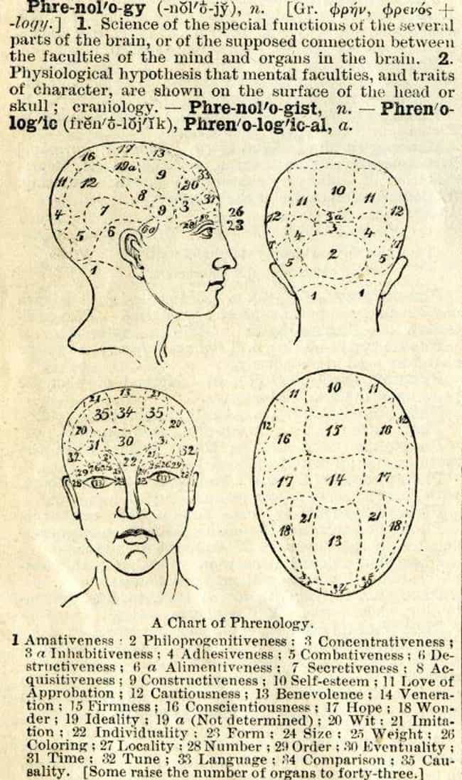 Some Employers Demanded A Refe... is listed (or ranked) 3 on the list 13 Disgusting Facts About Phrenology, The Pseudoscience Used To Justify Racism