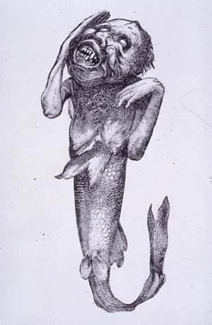 His Feejee Mermaid Was Actuall... is listed (or ranked) 3 on the list 14 Incredible Facts About American Showman P.T. Barnum