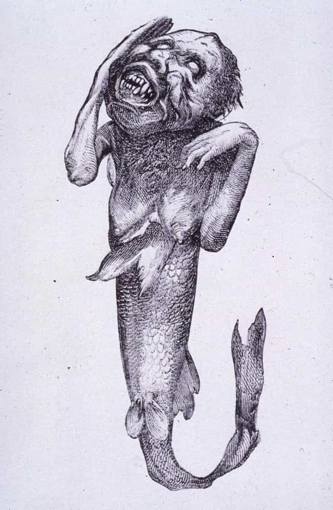 His Feejee Mermaid Was A... is listed (or ranked) 3 on the list 14 Incredible Facts About American Showman P.T. Barnum