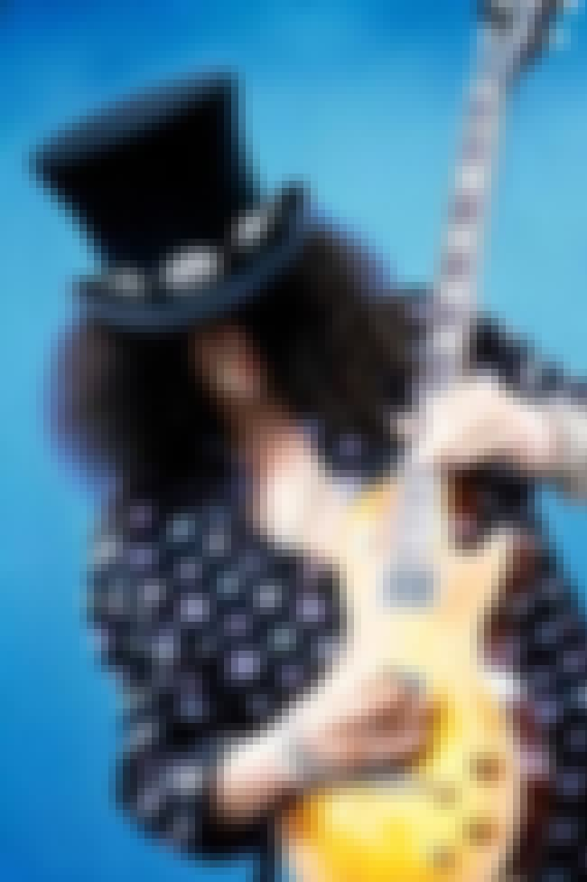 Slash Brought A Mountain Lion ... is listed (or ranked) 4 on the list Absolutely Insane Behind-The-Scenes Guns N' Roses Stories