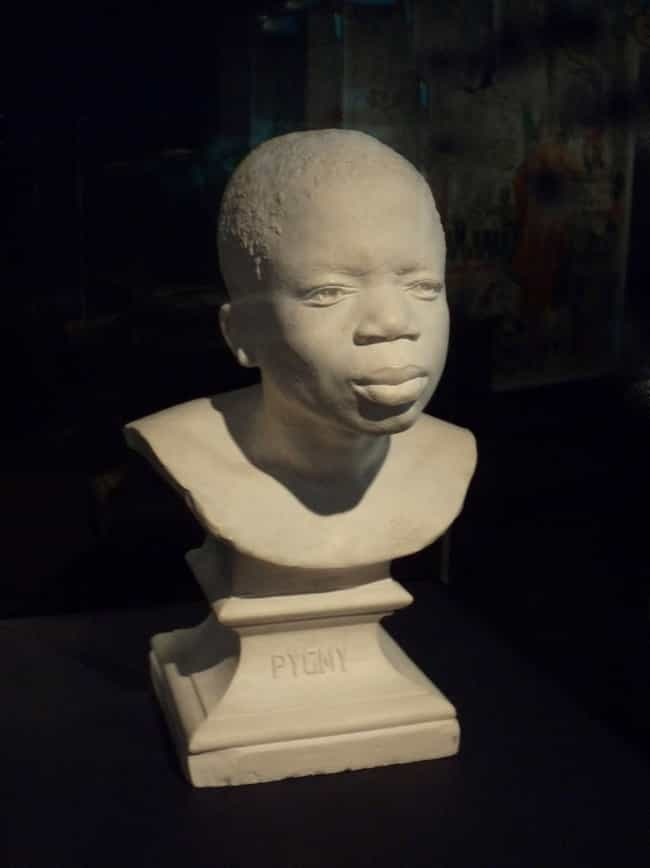 Benga Returned To Africa Only ... is listed (or ranked) 4 on the list Heartbreaking Facts About Human Zoo Exhibit Ota Benga