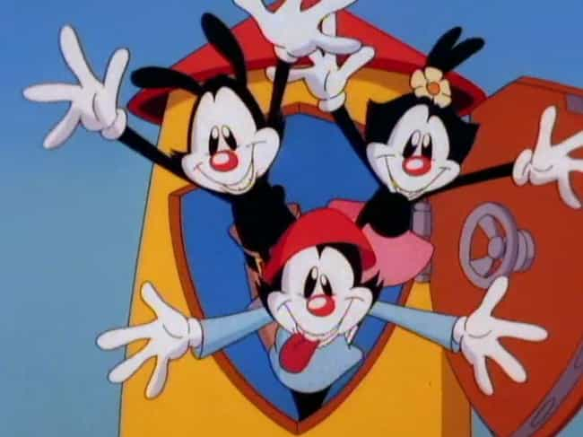 They Are Forced To Share A Com... is listed (or ranked) 3 on the list Why The Animaniacs Are Secretly A Bizarre Metaphor For The Perfect Nuclear Family