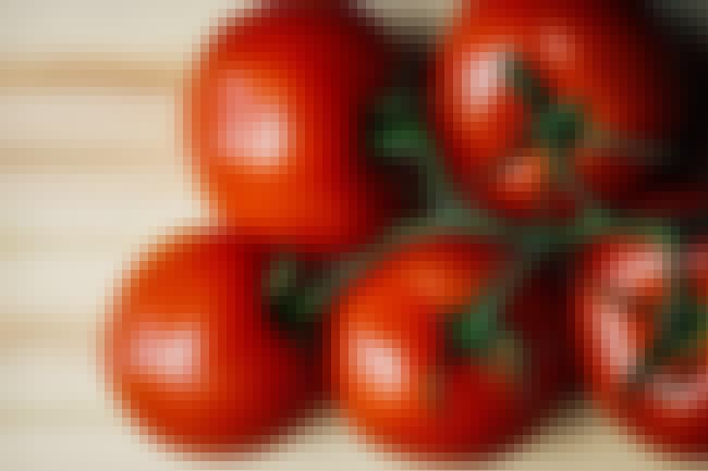 Plants That Emit More Chemical... is listed (or ranked) 2 on the list Tomatoes Are Turning Insects Into Cannibals, Good Times