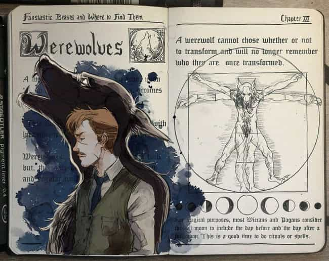 Werewolves is listed (or ranked) 3 on the list This Artist Creates Awesome Harry Potter Watercolor Fan Art