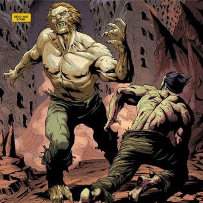 Wolverine And Sabretooth... is listed (or ranked) 4 on the list Wildly Convincing Marvel Comic Books Fan Theories