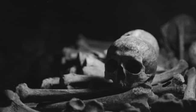 The School Had No Idea Just Ho... is listed (or ranked) 1 on the list The Mystery Of 7,000 Bodies Buried Under The University Of Mississippi Campus