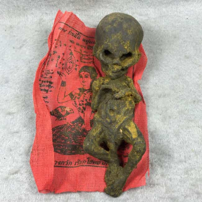 Fetus Good Luck Charms is listed (or ranked) 1 on the list eBay Is A Marketplace For Some Of The Strangest And Most Macabre Items Ever