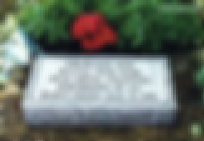 Princess Doe Still Remains Uni... is listed (or ranked) 1 on the list These Cryptic Messages On Tombstones Only Hint At Their Terrifying Backstories