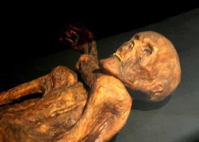 Ötzi's Excavation Took Fou... is listed (or ranked) 2 on the list Scientists Found A Perfectly Preserved Ice Corpse - And Then, One By One, They Died