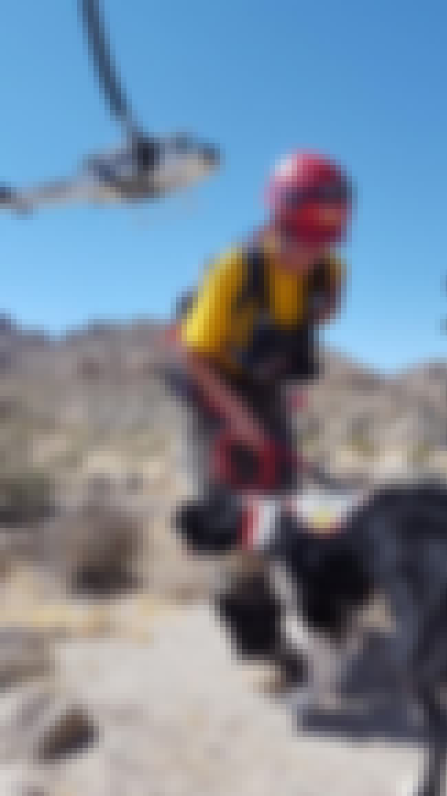 Search Crews Had To Call Off A... is listed (or ranked) 3 on the list Rescue Crews Are Searching For Two Hikers Who Went Missing In Joshua Tree Amid Rising Temperatures