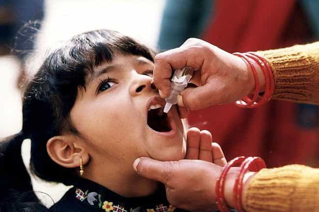 Vaccinated Children Are ... is listed (or ranked) 5 on the list The Tragic Yet Fascinating History Of The Polio Vaccine