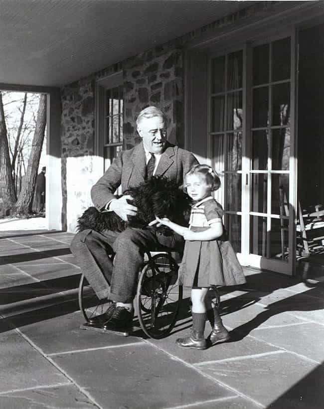 President Roosevelt And ... is listed (or ranked) 7 on the list The Tragic Yet Fascinating History Of The Polio Vaccine