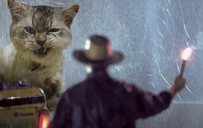 """I See You've Thrown O... is listed (or ranked) 3 on the list Jurassic Park's Dinosaurs Replaced With Cats Is An Internet Masterpiece"