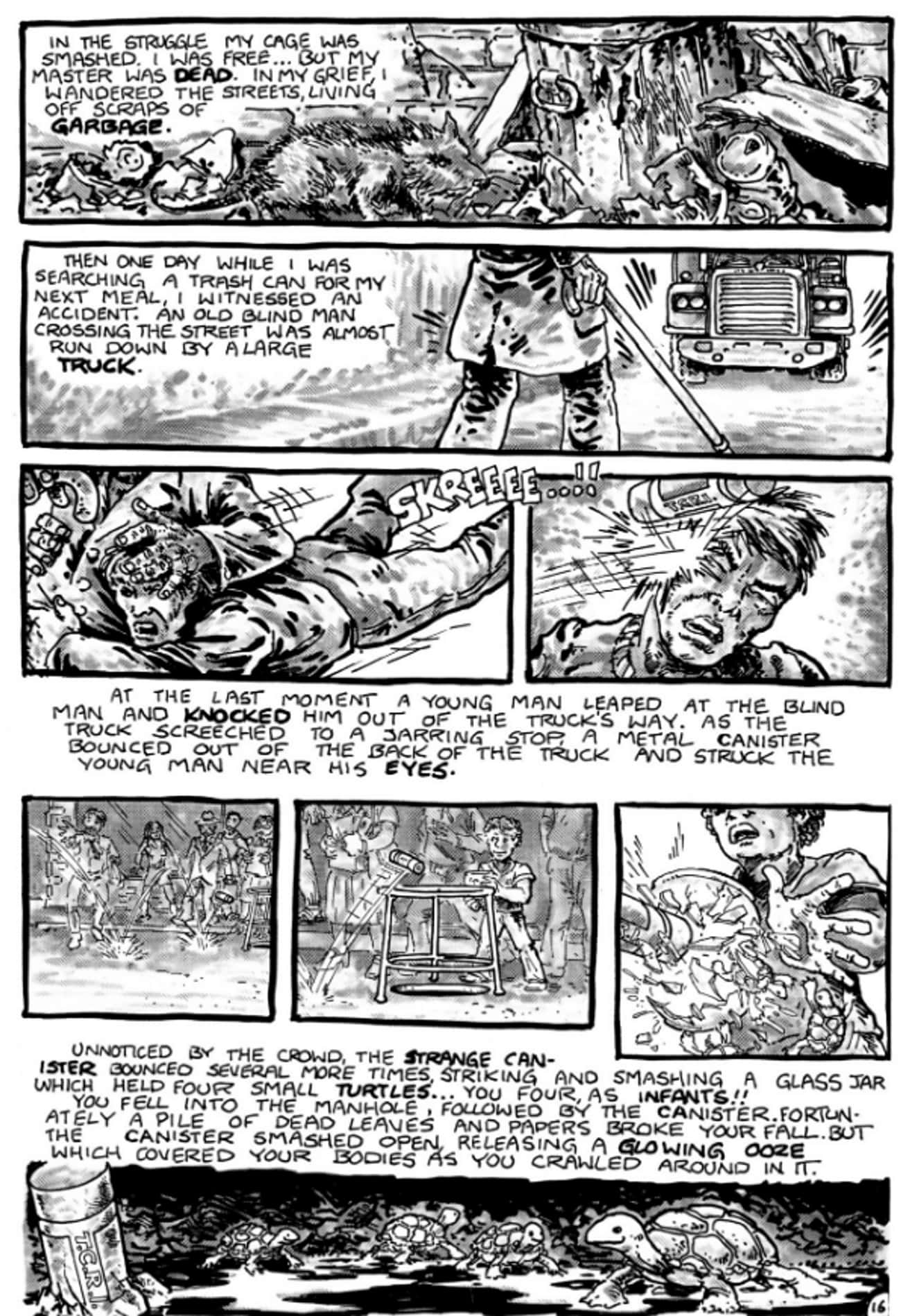 The Comic Was Originally Meant is listed (or ranked) 3 on the list Teenage Mutant Ninja Turtles Fan Theories