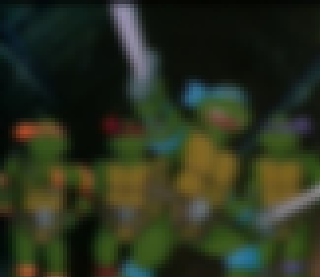 The Turtles Were Really Frustr... is listed (or ranked) 2 on the list Teenage Mutant Ninja Turtles Fan Theories