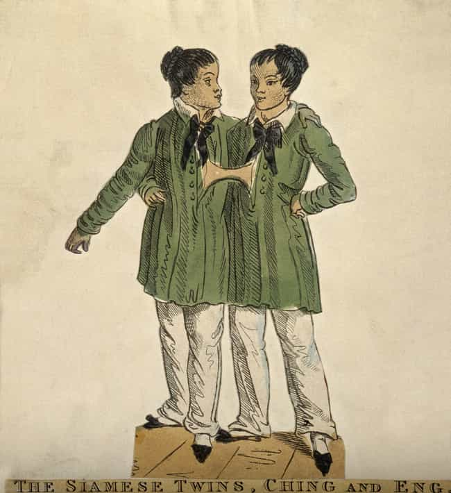 A British Merchant Pluck... is listed (or ranked) 2 on the list The Strange Lives Of Chang And Eng Bunker, The Original Siamese Twins