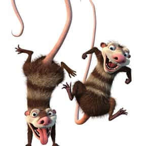 Crash and Eddie is listed (or ranked) 6 on the list The Best Characters in the Ice Age Series, Ranked