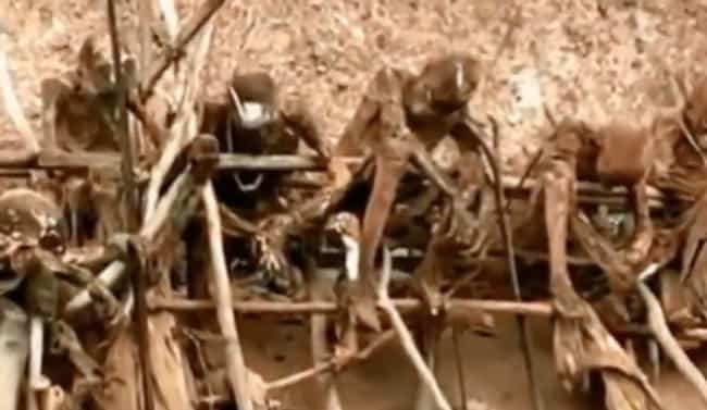 The Practice Is An Extremely H... is listed (or ranked) 1 on the list The Smoked Corpses Of The Kuku Kuku People Are One Of History's Creepiest Death Rituals