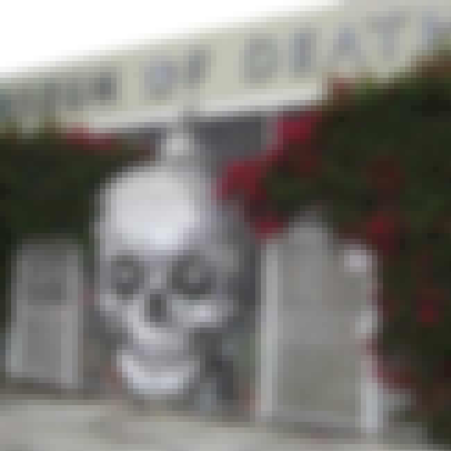 Photos Of A Woman Dismembering... is listed (or ranked) 1 on the list Some Of The Most Macabre And Disturbing Items On Display At The Museum Of Death In Hollywood