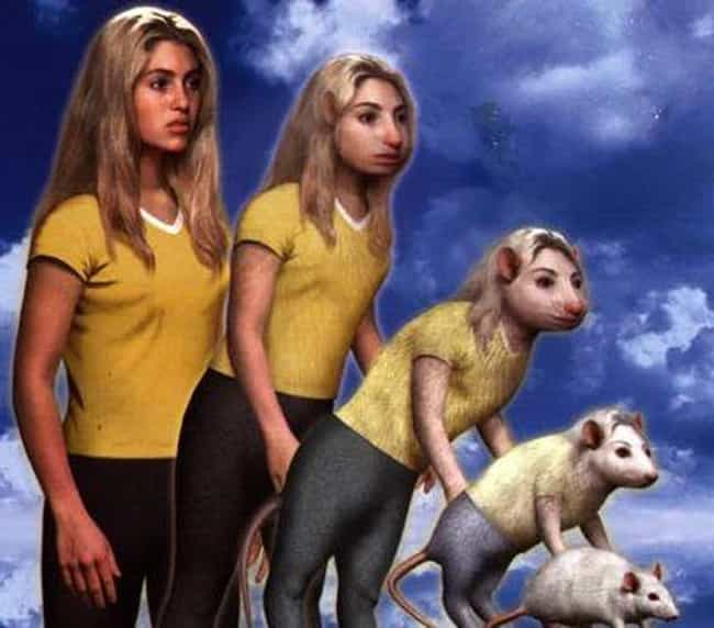 Five Kids Trap Another K... is listed (or ranked) 3 on the list 17 Animorphs Storylines Guaranteed To Give You Night Terrors