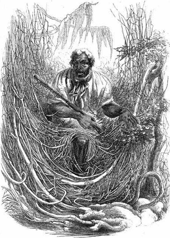 Random Facts Of Escaped Slaves Who Abandoned Society To Live In A Swamp