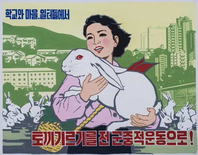 Let Us Launch An All-People Ca... is listed (or ranked) 4 on the list 18 Utterly Ridiculous North Korean Propaganda Posters (And What They Say)