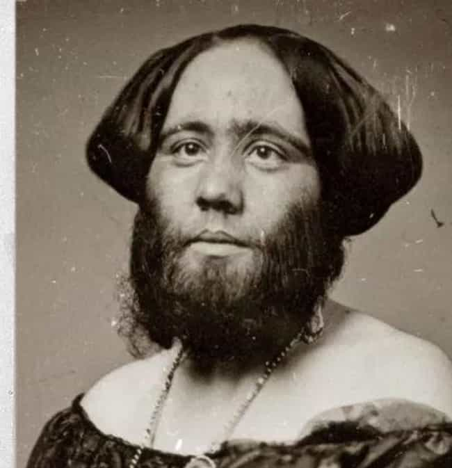Madame Clofullia, The Bearded ... is listed (or ranked) 1 on the list Every Single Human Attraction From P.T. Barnum's Freak Show