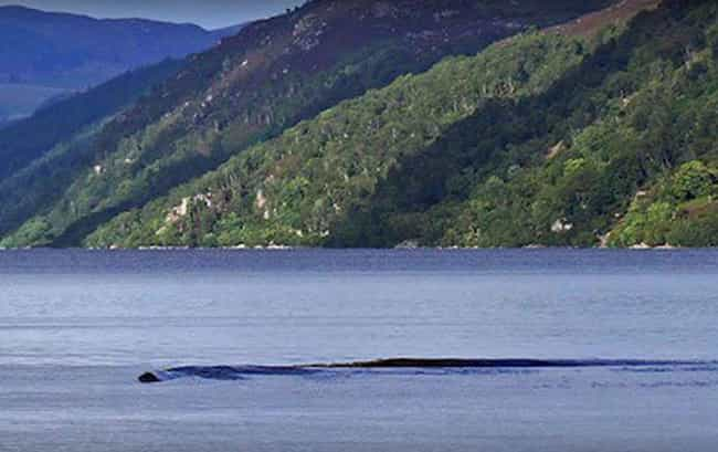 Gliding Just Below The S... is listed (or ranked) 4 on the list These Eerie Photos Might Prove The Loch Ness Monster Actually Exists