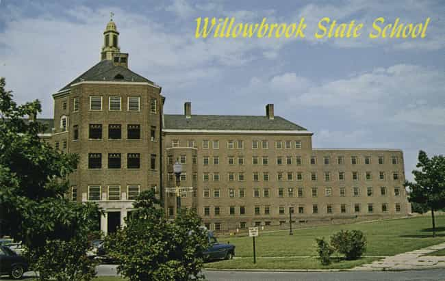 Despite The 'School' I... is listed (or ranked) 4 on the list Conditions At The Willowbrook Mental Asylum Were So Deplorable They Changed Federal Policy