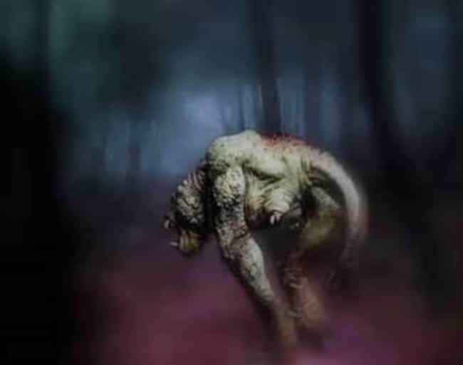 The Three-Legged Monster... is listed (or ranked) 1 on the list A Horrifying, Unidentified Monster Terrorized The Residents Of Enfield, Illinois In The Early '70s